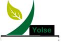 Yolse